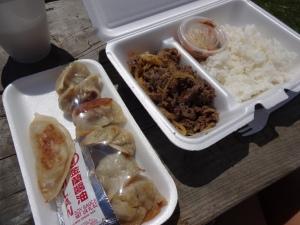 Mon assiette de dumplings coréens et bulgogi - délicieux!