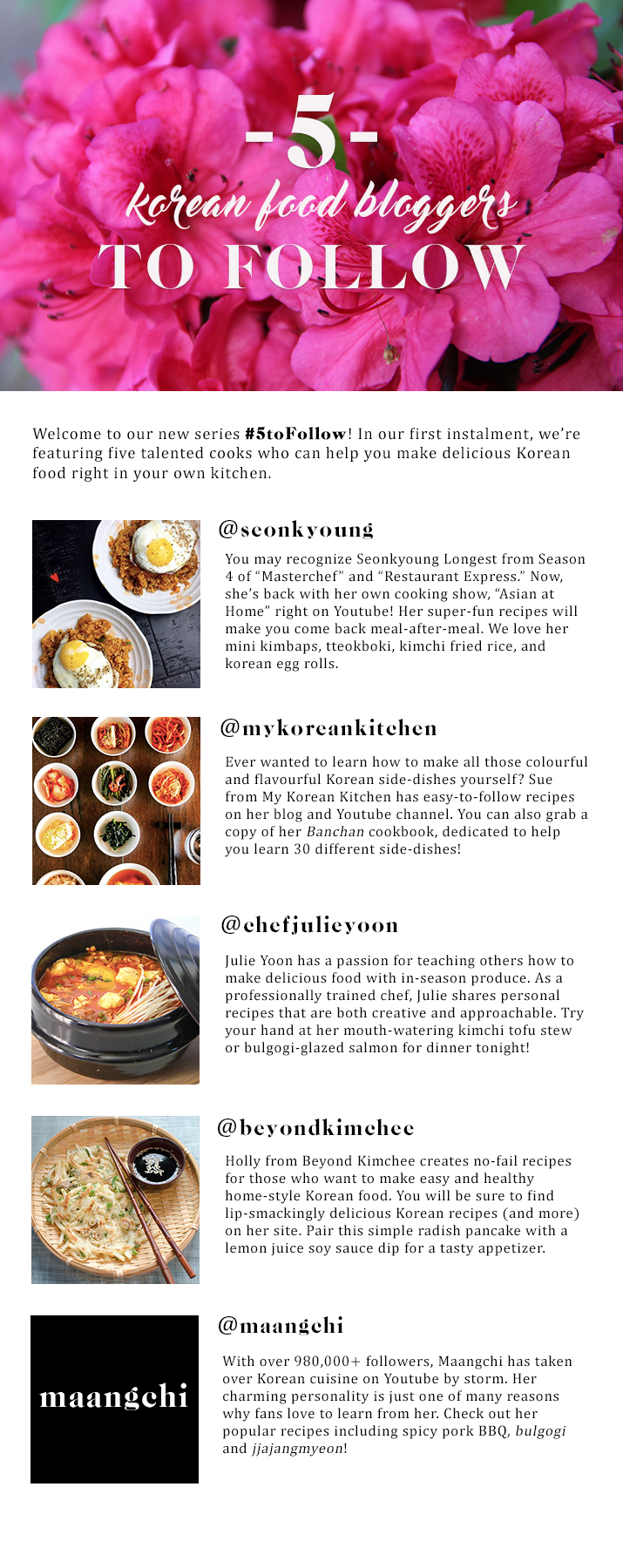 Five korean food bloggers to follow korea canada blog for all their tasty recipes click on these links below forumfinder Choice Image